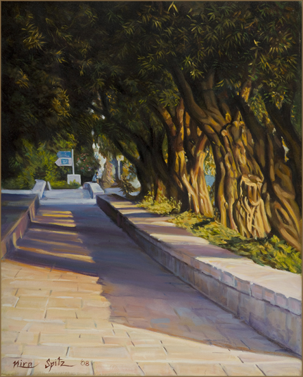 olive_trees.jpg